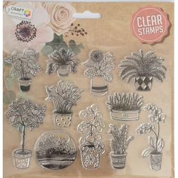 Stemple Clear  kwiaty