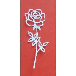 Róża 1 sztuka
