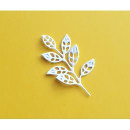 gałązka liście